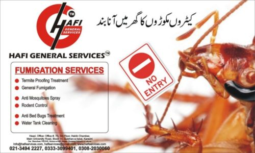 Cockroaches Control Spray Karachi